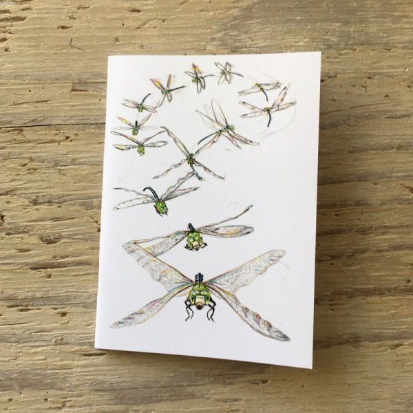 dragonfly flight pocket notebook
