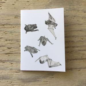 noctule bat pocket notebook