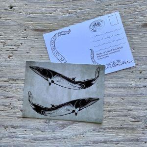minke whale postcard