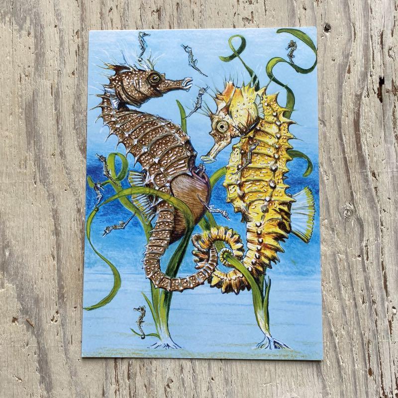 Spiny Seahorse Art Print