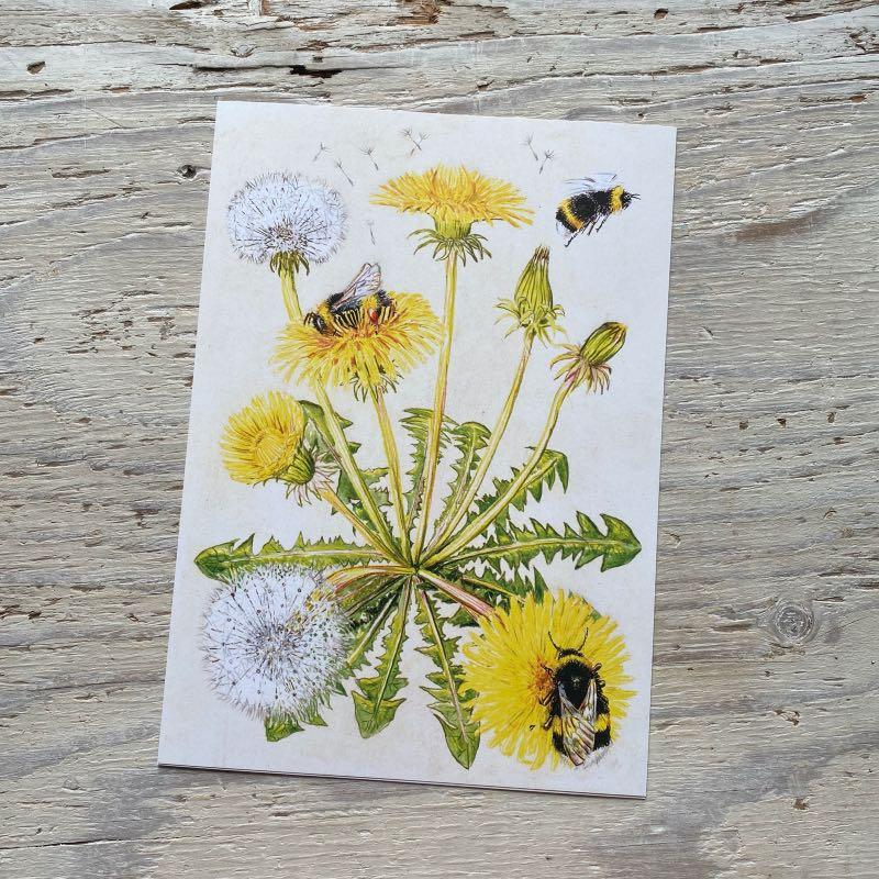 Bumblebee and dandelion art print