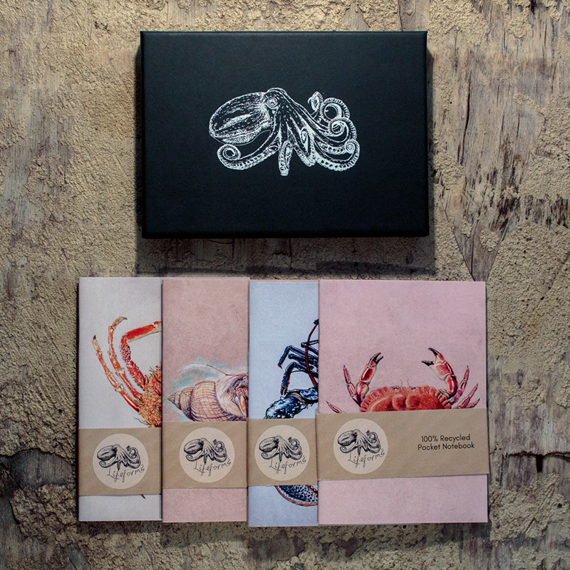 Crustaceans Pocket Notebook Gift box