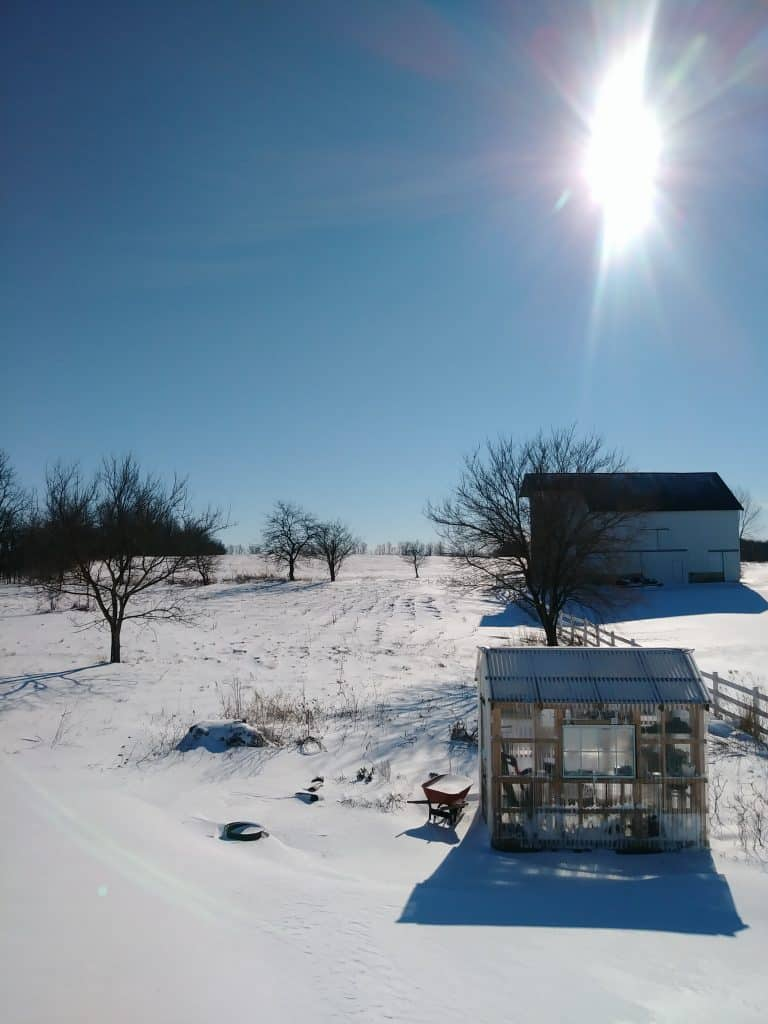Winter scene with snow and a greenhouse