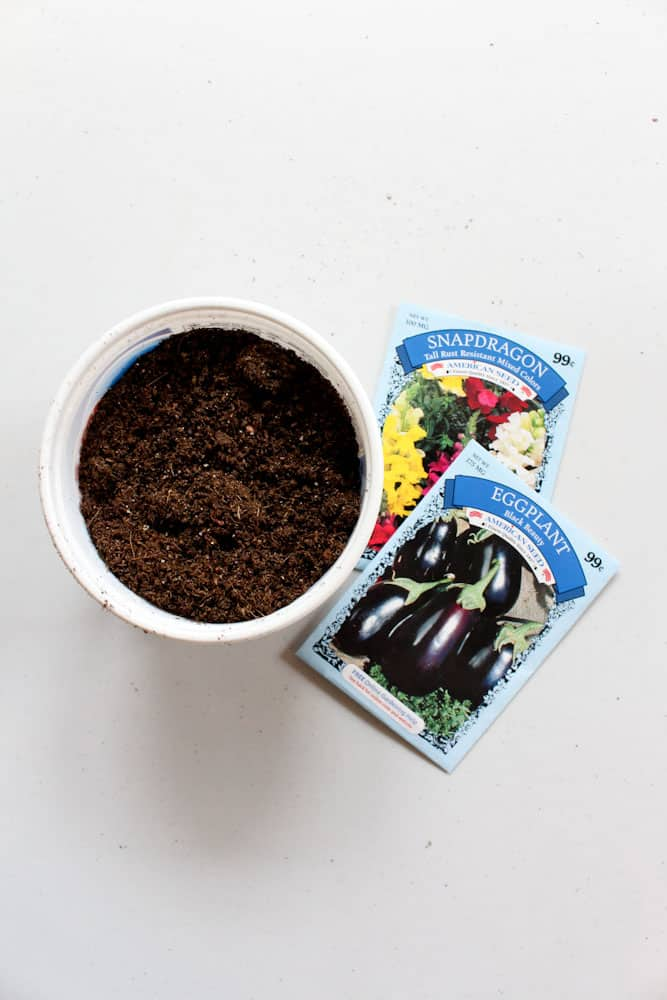 simple steps to starting seeds indoors life full and frugal soil and seeds