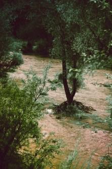 flooding san pedro river hurricane odile