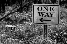 One Way sign with Stoolin the background