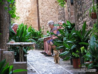 pictures-of-ITALY (94)