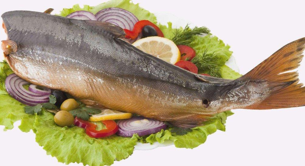 Горбуша  интересные особенности яркого представителя лососевых рыб