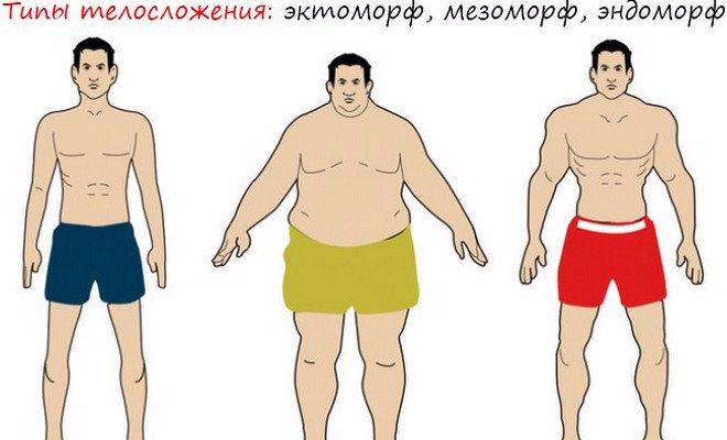 pierderea de grăsimi pentru mezomorf feminin)
