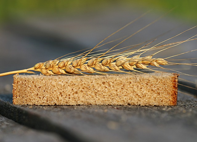 пшеница, колосок, хлеб