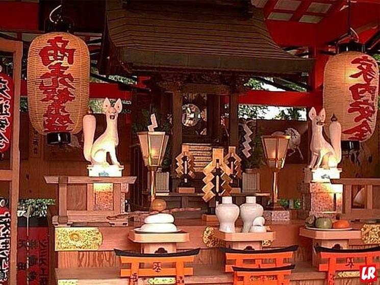 фишки дня - 22 февраля, день кошек в Японии, кошачий храм Кагосима