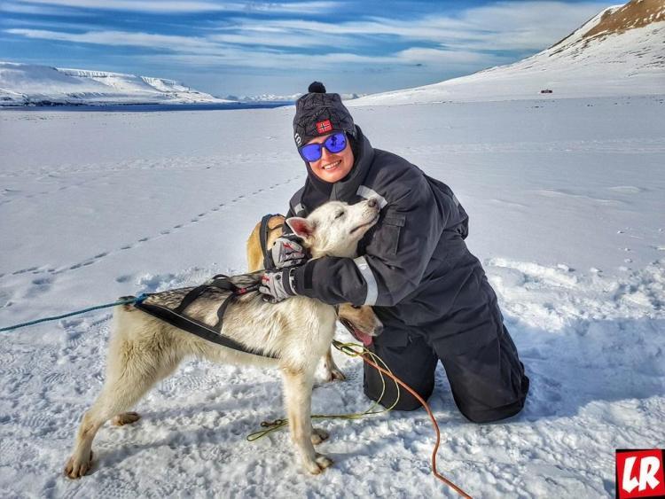 Арктика, восхождение на Ньютон, полярные собаки