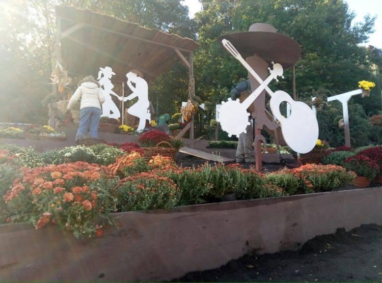 Фестиваль хризантем в Киеве, подготовка