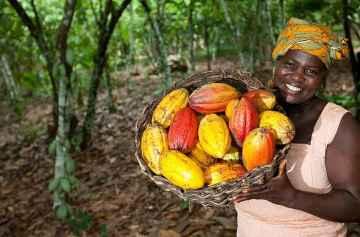 фишки дня, День независимости Кот д'Ивуар