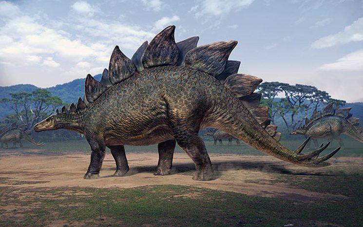 фишки дня, стегозавр