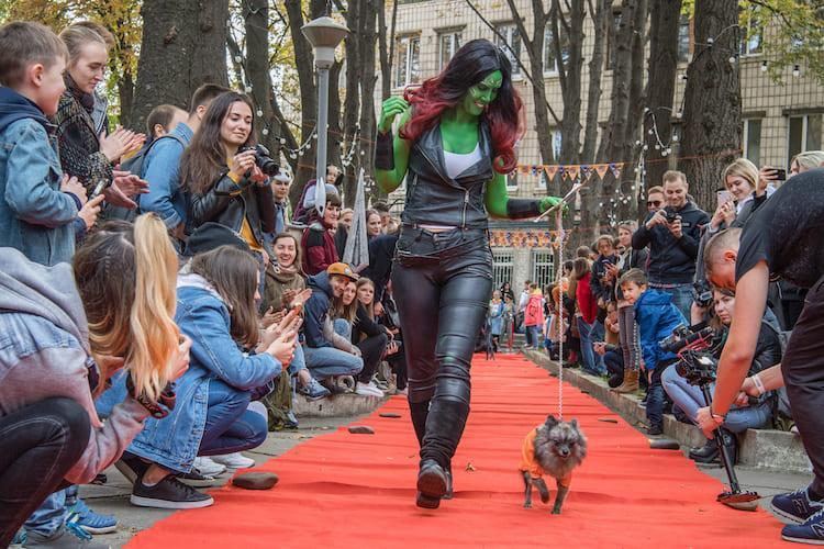 Comic Con Ukraine, собачий косплей, костюмы