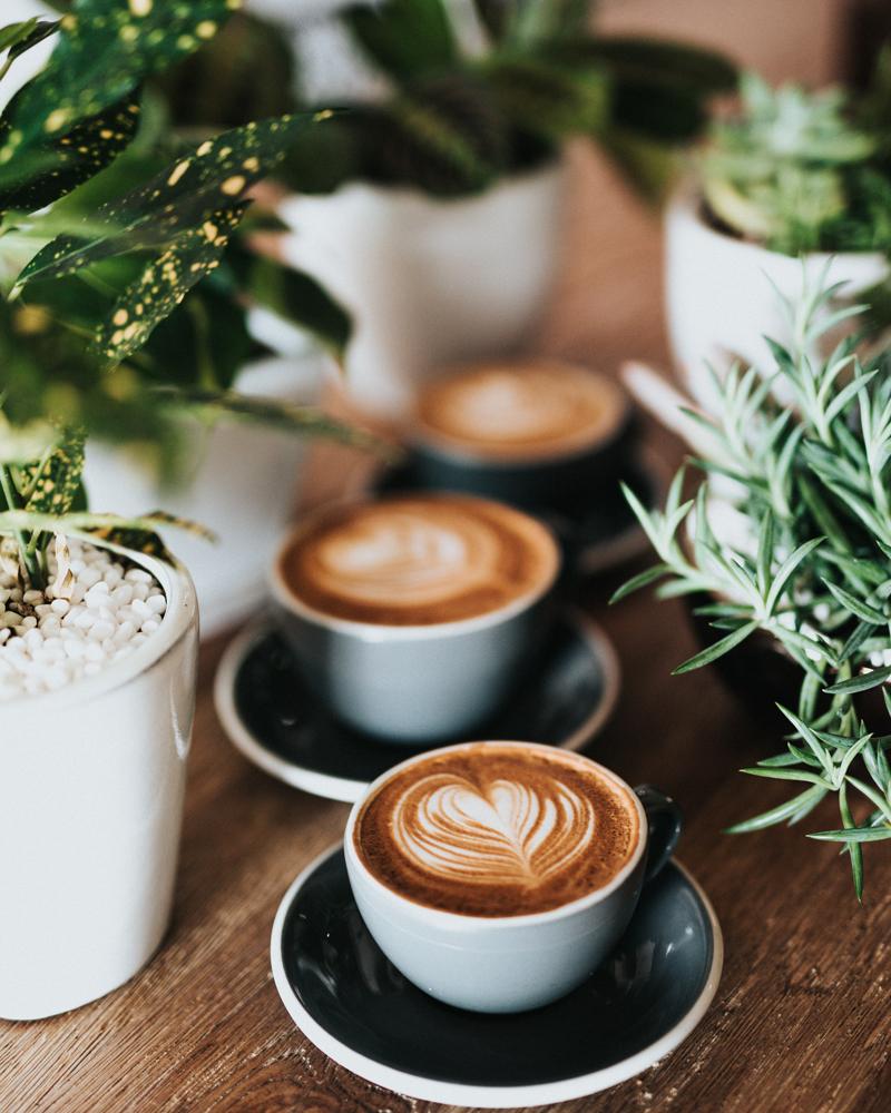 coffee shop mentorship meeting