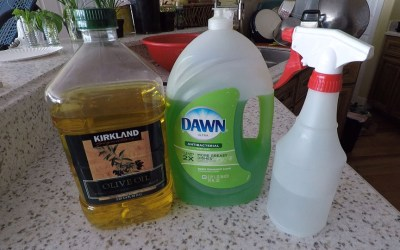 Homemade bug spray – aphid killer