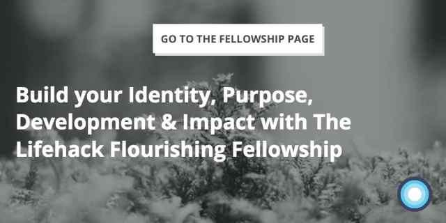 Identity, Purpose, Development, Impact - Lifehack Flourishing Fellowship