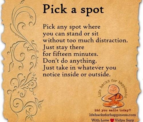 pick a spot vidya sury