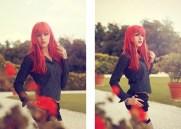 Red diesis