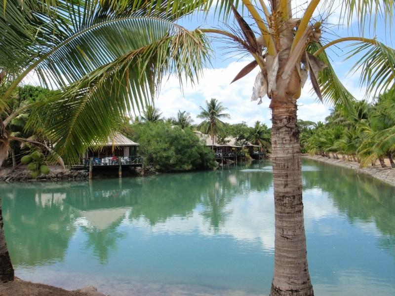 Dreaming of Fiji