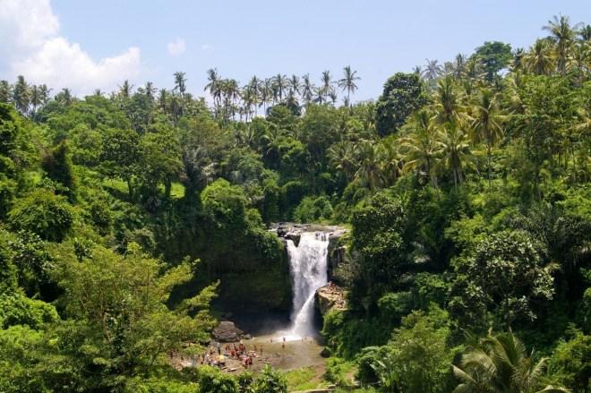 Balio krioklys džiunglėse
