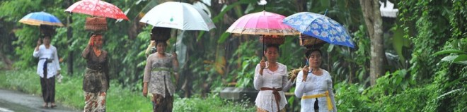 Lietaus sezonas Balio saloje: privalumai ir nepatogumai kelionėje