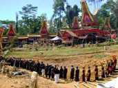 Interesting facts about Indonesia - Toraja