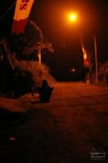 Waiting till somebody will pass near Merapi post