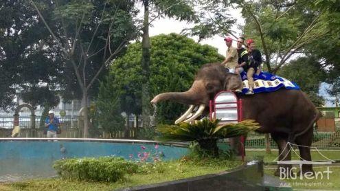 Kinantan Zoo