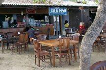 Jack fish