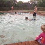 Vår kära Krugerpark