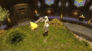 ... how the hell am I carrying the chocobo down?