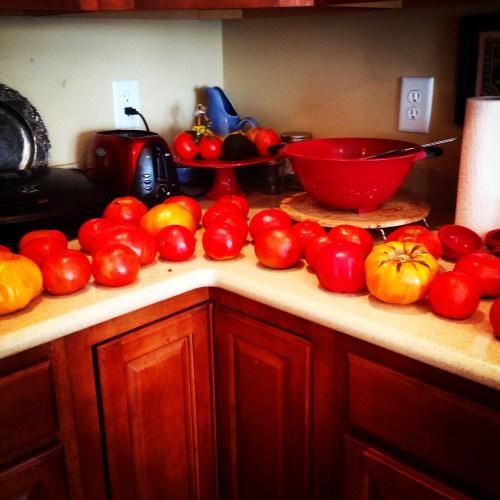 food tomatoes