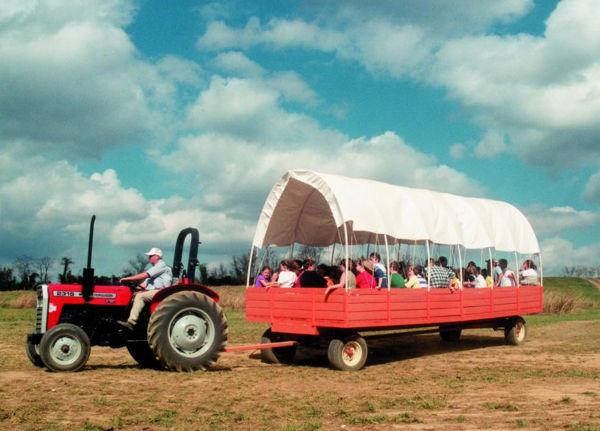oakesfarm-hayrideandpumpkin1