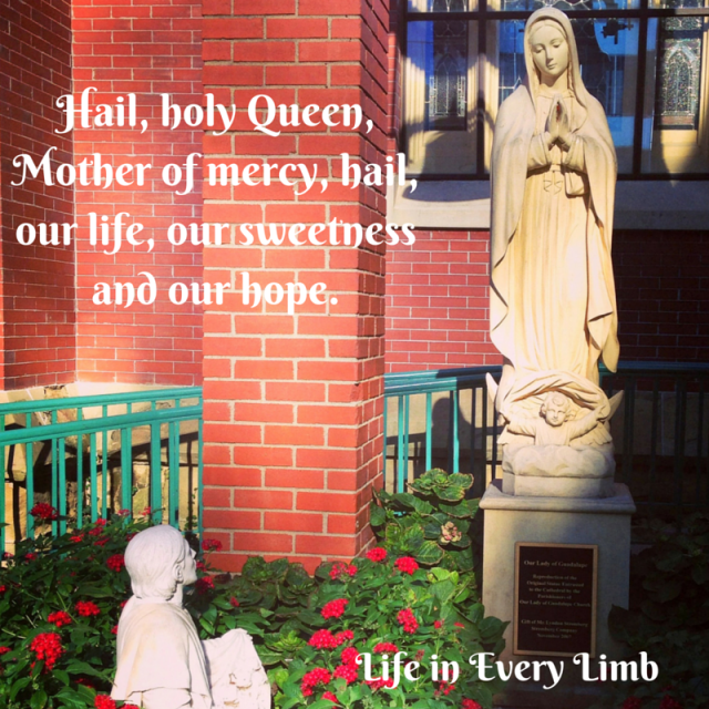 Hail, holy Queen, Mother of mercy, hail, our life, our sweetness and our hope.