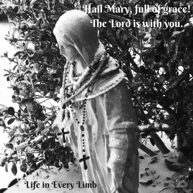 Hail Mary, full of grace! The Lord is with you.