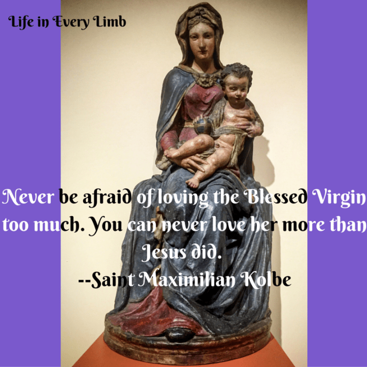 """Never be afraid of loving the Blessed Virgin too much. You can never love her more than Jesus did.""""--Saint Maximilian Kolbe"""