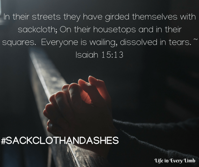 In their streets they have girded themselves with sackcloth; On their housetops and in their squares. Everyone is wailing, dissolved in tears. _ Isaiah 15_13