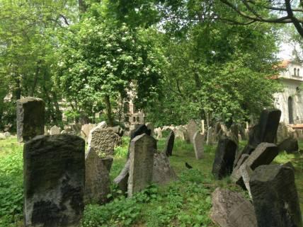 The jewish cemetery © Salomé Auliard