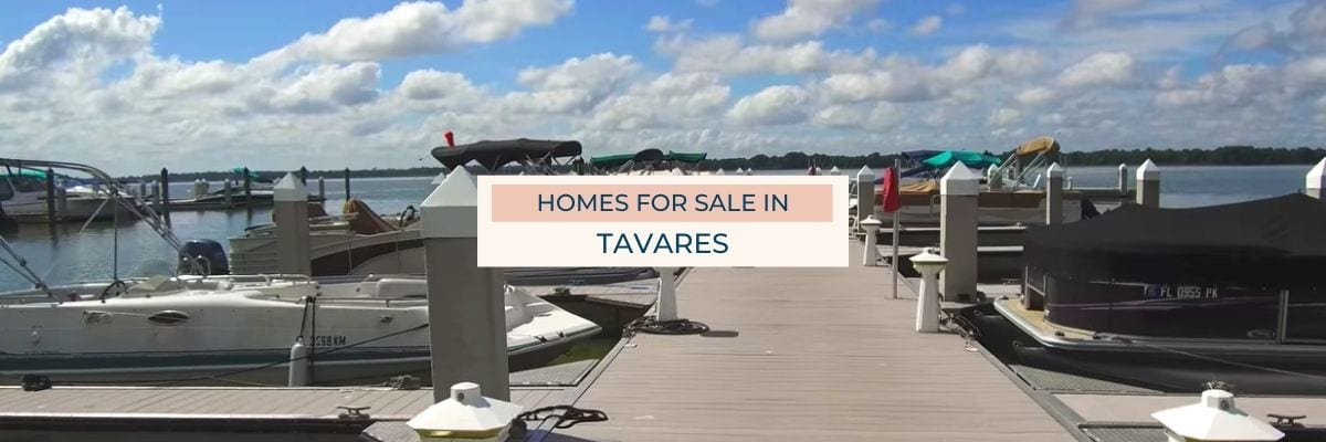 Tavares Homes for Sale