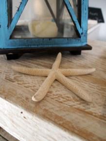 Starfish, The Gallivant, Rye