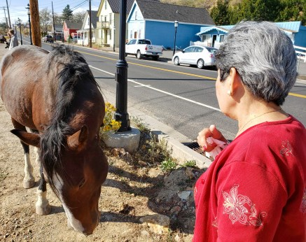 Cora and horse edited