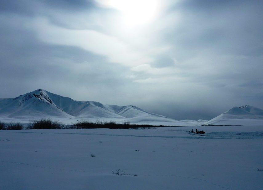 Snowscape of Alaskan Malamute sleddog team heads towards the Northern side of the Brooks Range, Alaska.