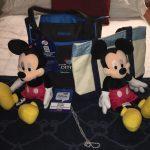 I'm Going to Disney 6