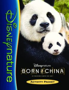 thumbnail of BornInChina_pdf_ActivityKit_LifeinPumps