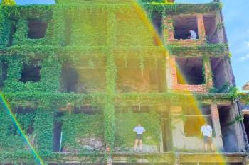 【台南景點】意外闖進台南秘境小屋 好拍的巨人樹屋~~台南綠色房屋
