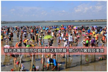 【台南七股-活動】觀光赤嘴園暨挖文蛤體驗活動開幕 開心FUN暑假啖美食