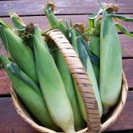 Three Ways to Cook Olathe Sweet Corn